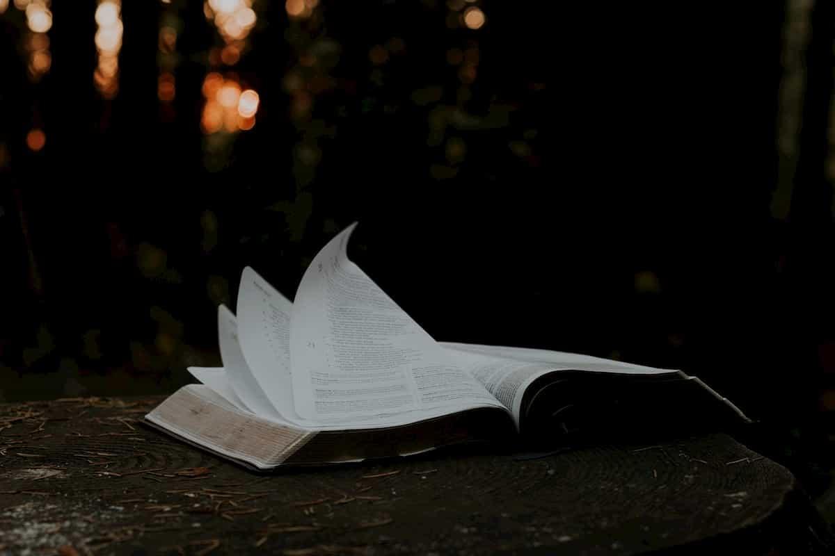 屋外で開かれた本